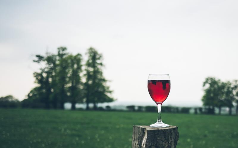 Frequentare un corso professionale di degustazione vino a Torino